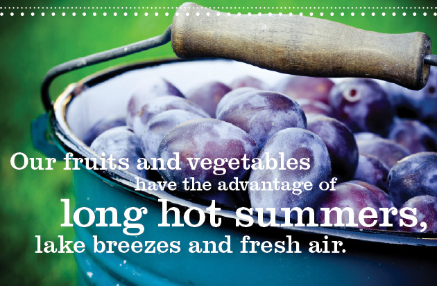 Our fruits and vegetables have the advantage of long hot summers, lake breezes and fresh air.